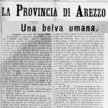 bn_La-Provincia-di-Arezzo